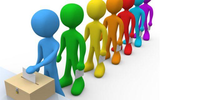 La participation politique : statut et conditions